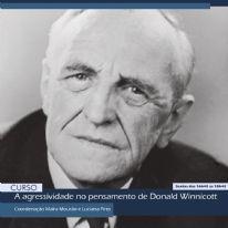A agressividade no pensamento de Donald Winnicott